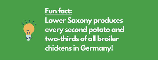 Fun fact Lower Saxony produces every second potato and two-thirds of all broiler chickens in Germany!