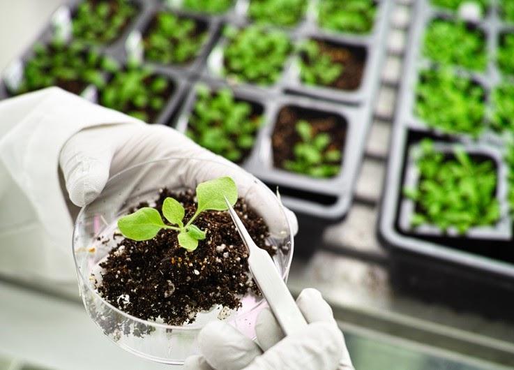 agbiotechnology blog