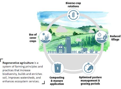 carbon farming blog 1